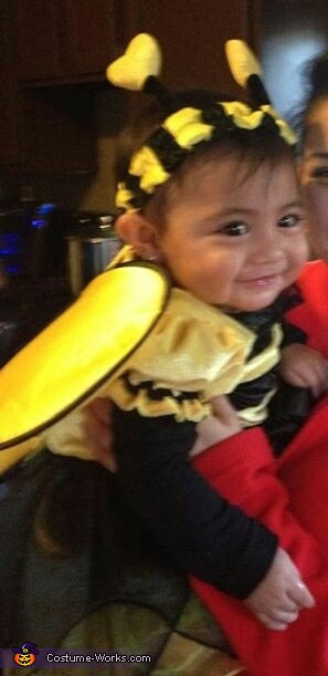 Bumble Bee Homemade Costume