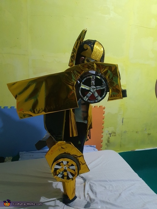 Bee Side, Bumblebee Costume