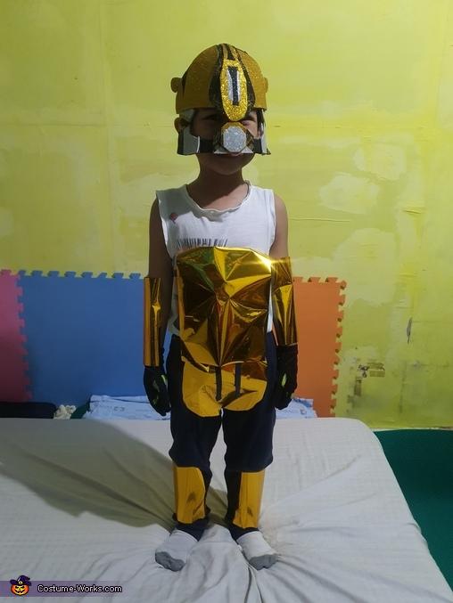 Beehave, Bumblebee Costume