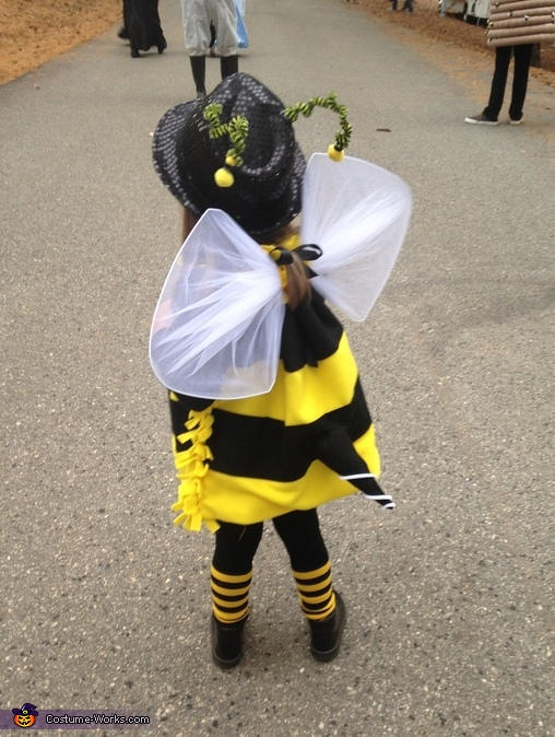 Bee Wings, Bumblebee Family Costume