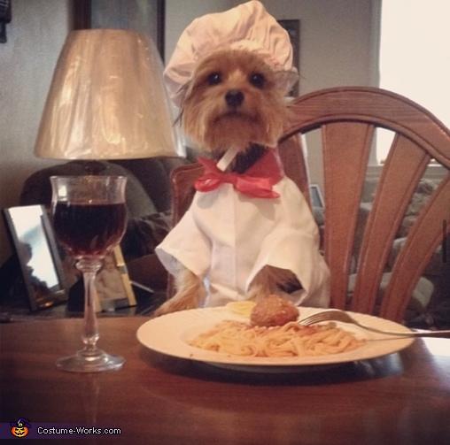 Buon Appetito Costume