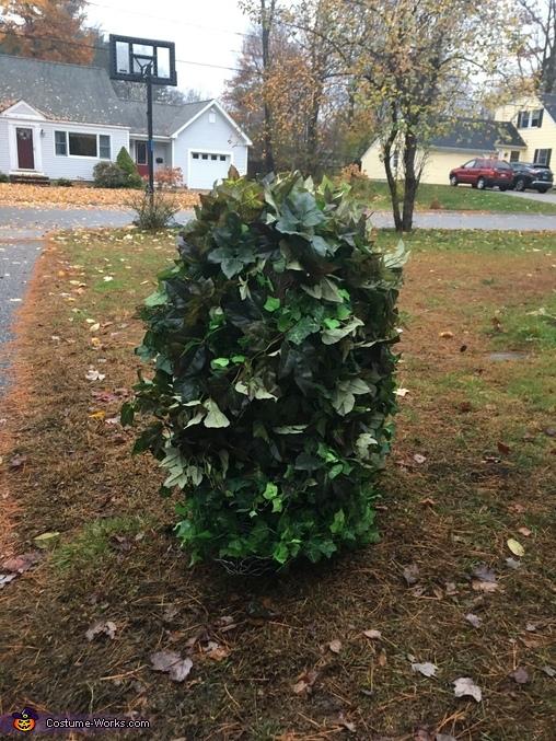 Bush Costume