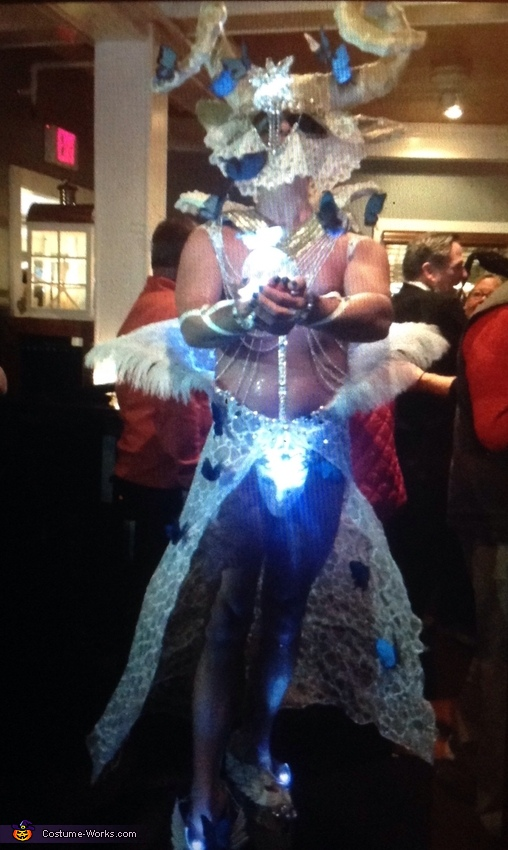 Out on the town ,all lite up, Butterfly Dream Costume
