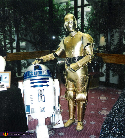 R2d2 And C3po Costumes Star Wars C-3PO...