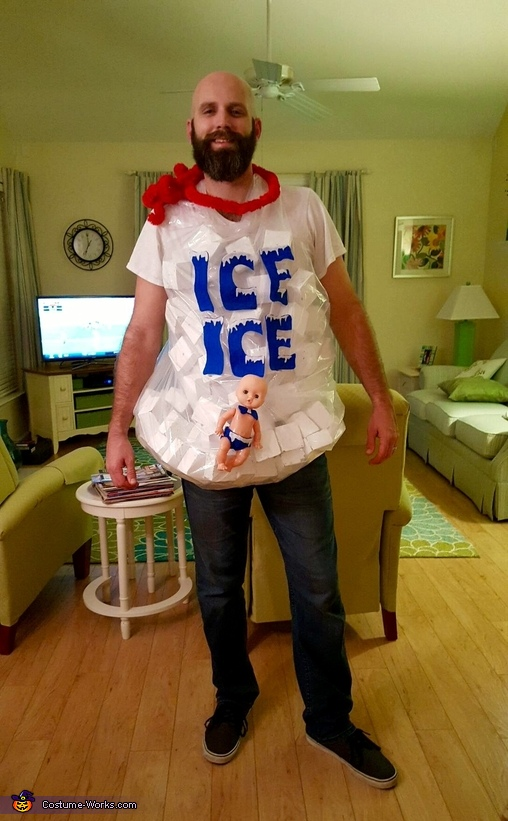 The Bag of Ice, Cactus and Ice Costume