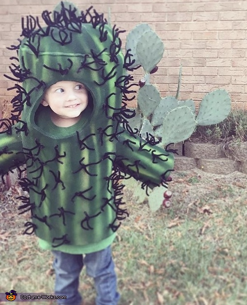 Cactus Cutie Costume