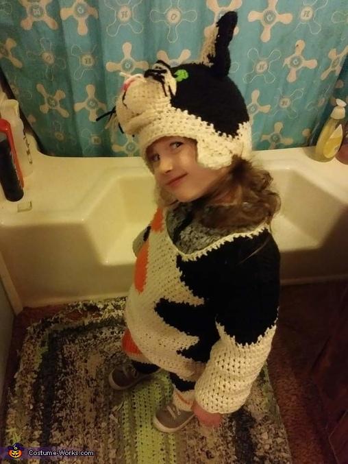 Calico Cat Homemade Costume