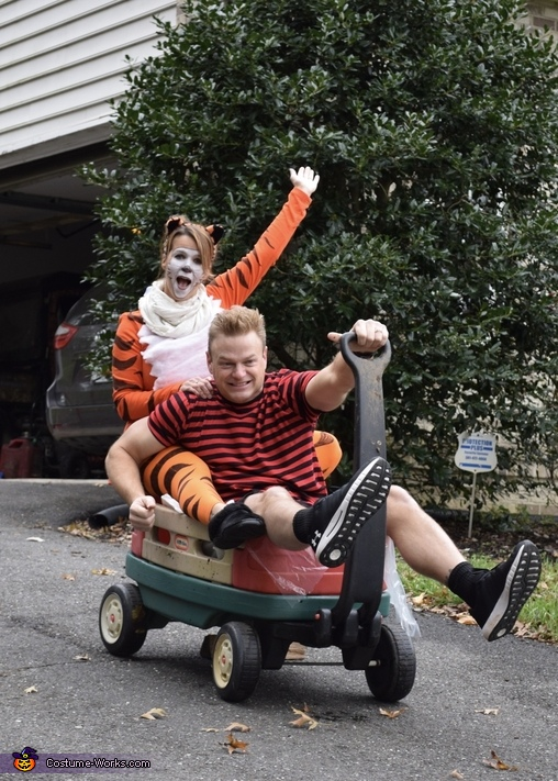Calvin & Hobbes wagon, Calvin & Hobbes Costume