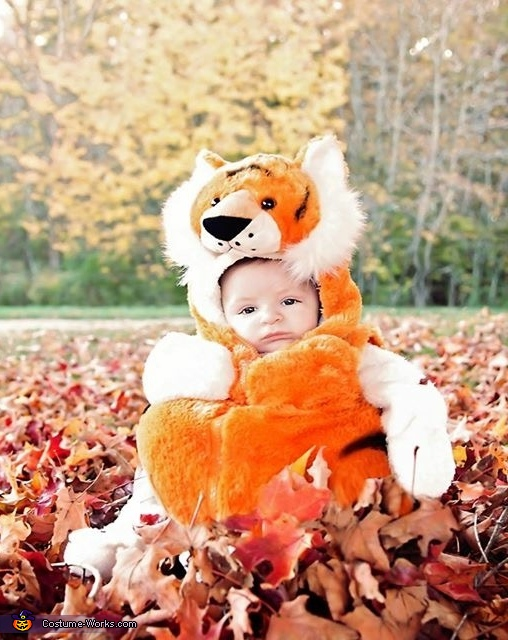 Calvin and Hobbes Homemade Costume