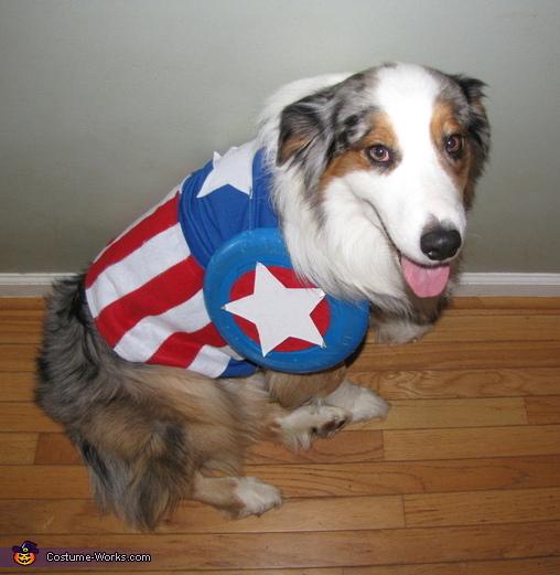 Please help me win!, Captain America Costume