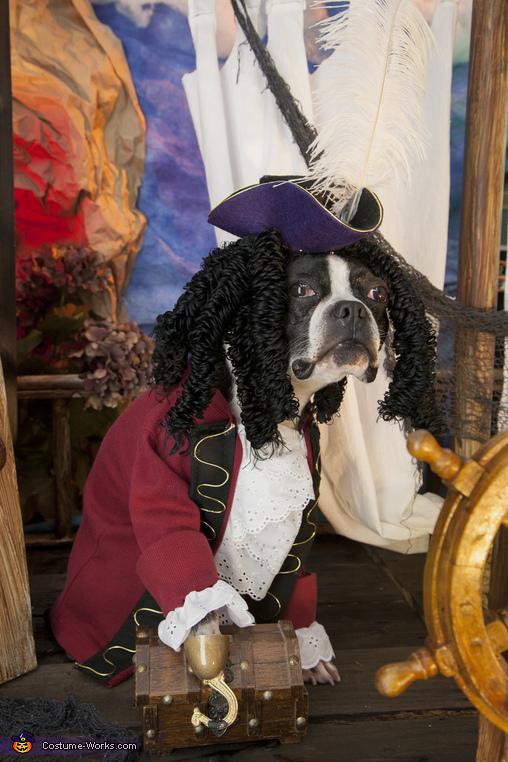 Captain Hook Boston Style Costume