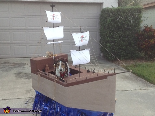 Captain Jack Sparrow Dog Costume
