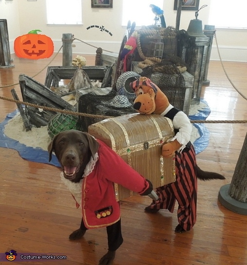Captain Olivia and her Pirate pal Scooby Costume