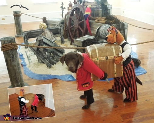 Captain Olivia - with back of costume, Captain Olivia and her Pirate pal Scooby Costume