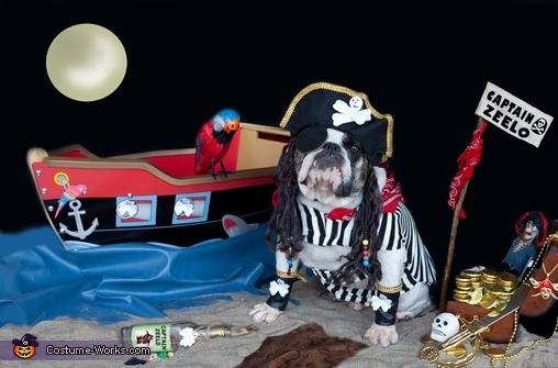 Captain Zeelo Pirate Costume