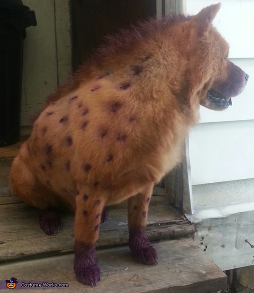 Cartoon Hyena Costume