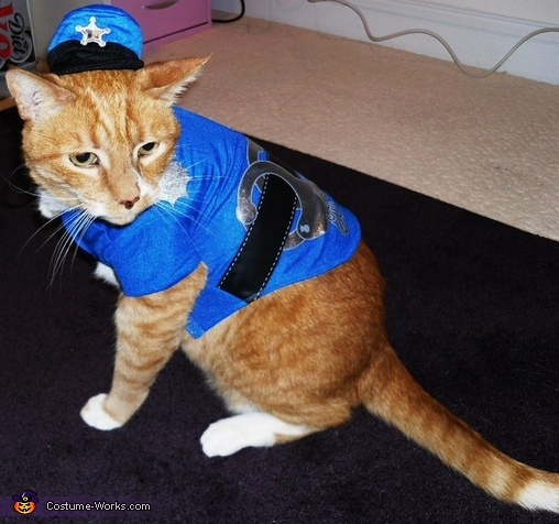Cat Cop CostumeCat Costume For Cats