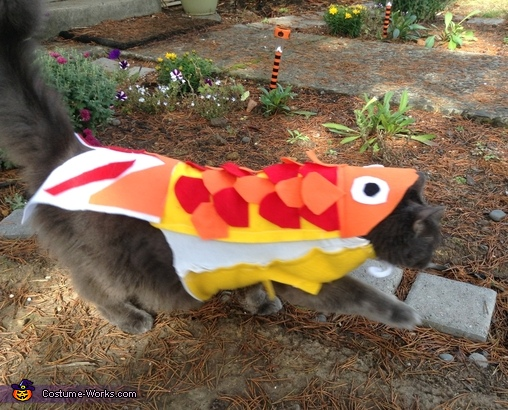 Cat Fish Costume