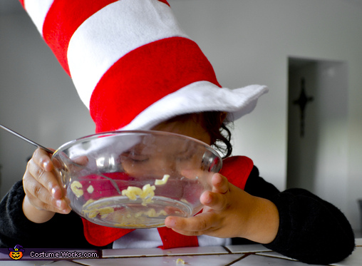 """The Cat In the Hat Knows a lot About Noodles"", The Cat in the Hat Costume"