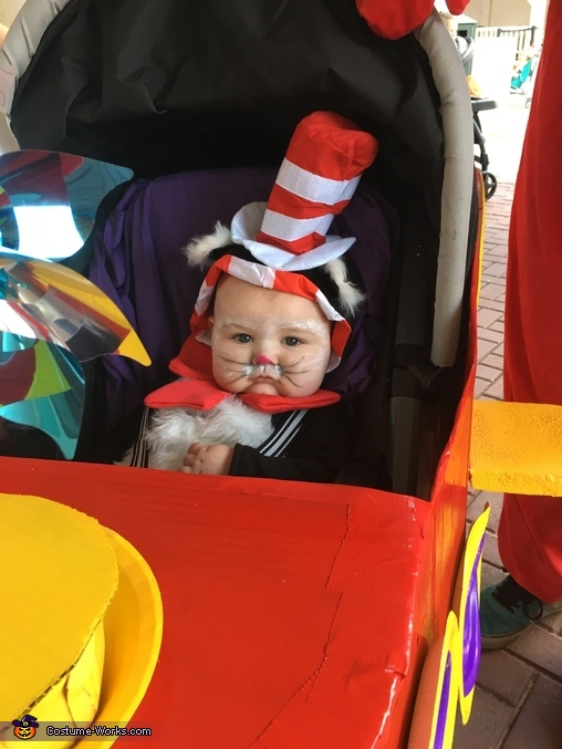 Baby cat in the hat, Cat in the Hat Costume