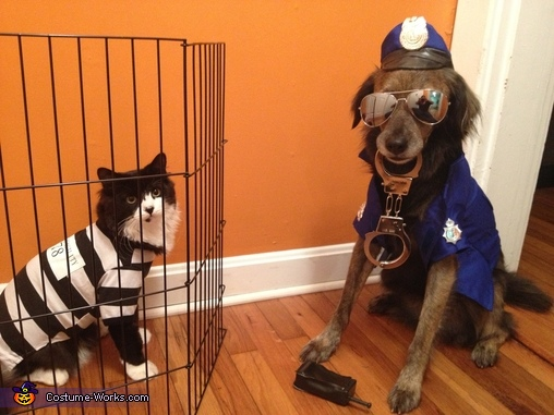 Cat Burglar and Dog Officer Costume