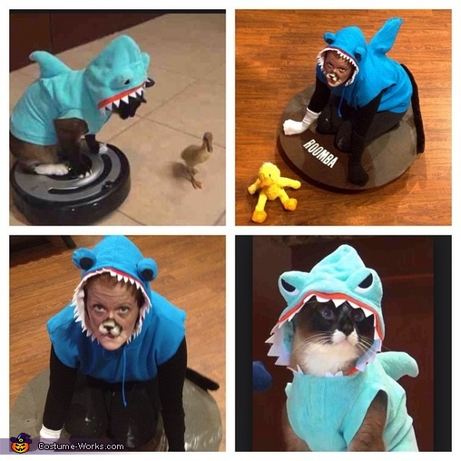 Shark Cat, Cat in a Shark Costume riding a Roomba chasing a Duck