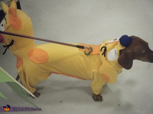 Showing Beanies head, CatDog Costume