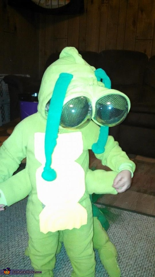He could not figure out why he had grown extra arms., Caterpillar Costume