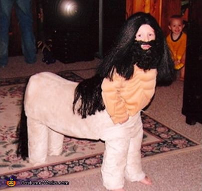Centaur - Homemade costumes for kids