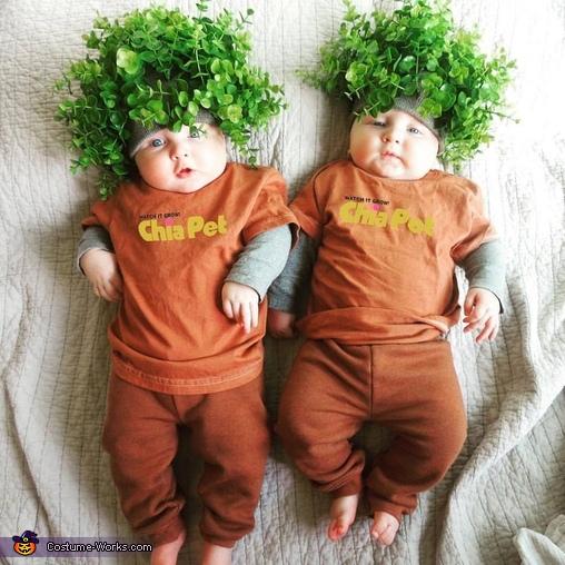 Ch Ch Ch Chia Twins Costume