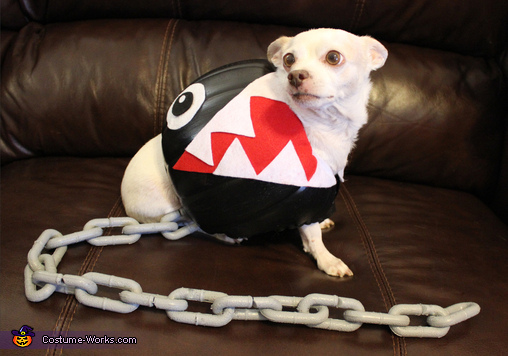 Chain Chomp, Chain Chomp Dog's Costume
