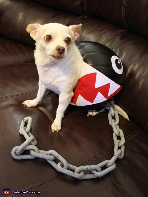 Chain Chomp Dog's Costume