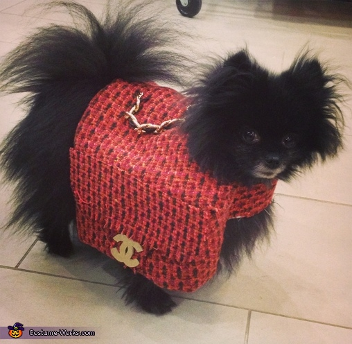 Chanel Bag Dog Costume