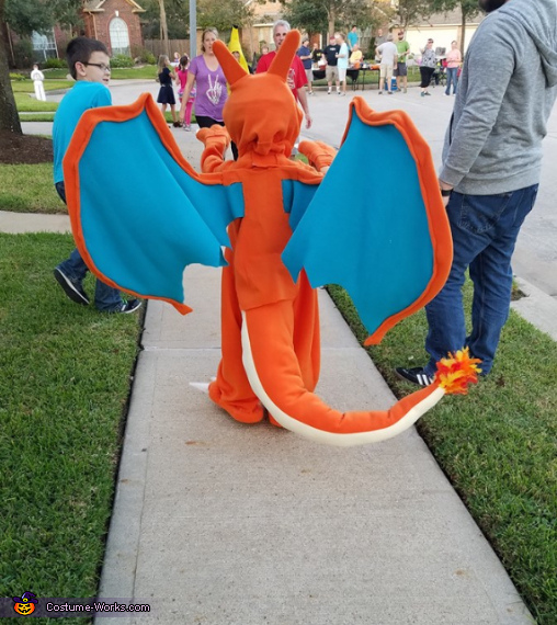Charizard back, Charizard Costume