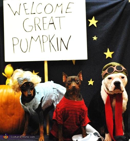Charlie Brown Great Pumpkin Costume