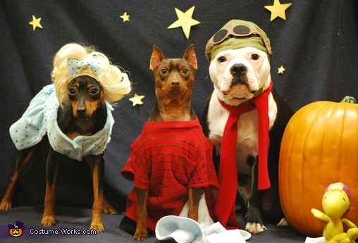 It's Lucy, Linus and Snoopy! All Waiting for the Great Pumpkin!, Charlie Brown Great Pumpkin Costume