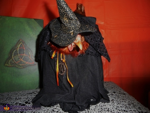 Charmed Chicken Costume