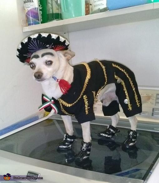 Charro Dog Costume