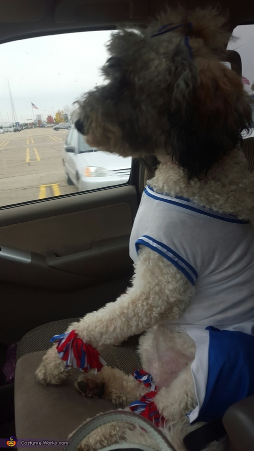 Cheerleader Dog Homemade Costume