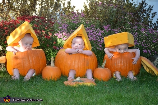 Cheese Head Pumpkins Costume