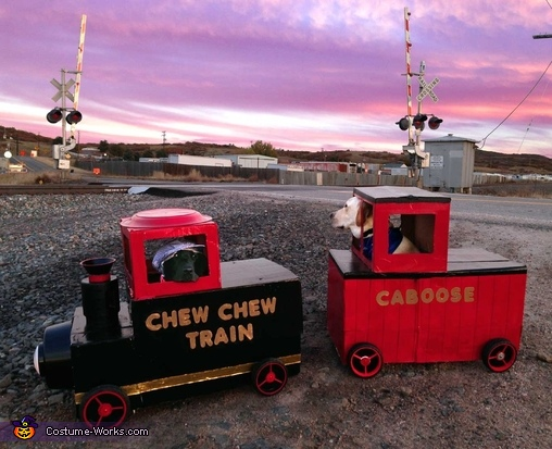 Chew Chew Train Costume
