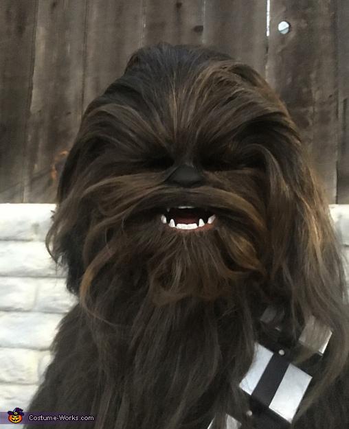 Chewbacca Homemade Costume