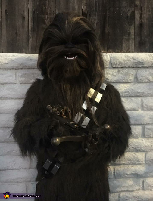 Chewbacca Homemade Costume