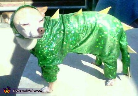 Homemade Godzilla Costume for Dogs