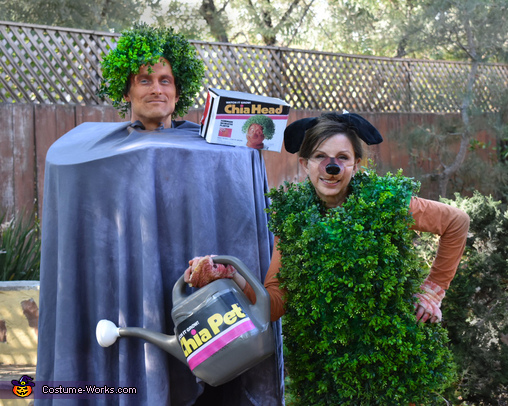 Closer up., Chia Head and Chia Pet Costume