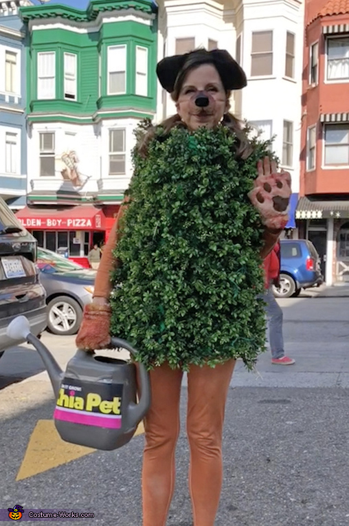 Chia Pet alone, Chia Head and Chia Pet Costume