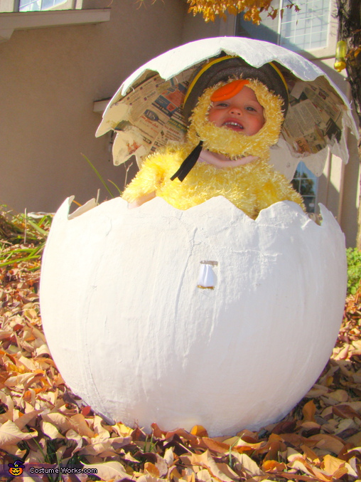 Chic in Egg, The Family Farm Costume