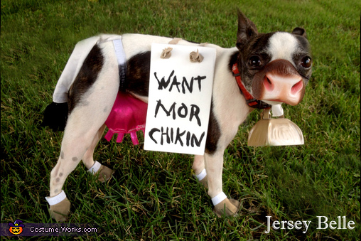 Chick-Fil-A Costume