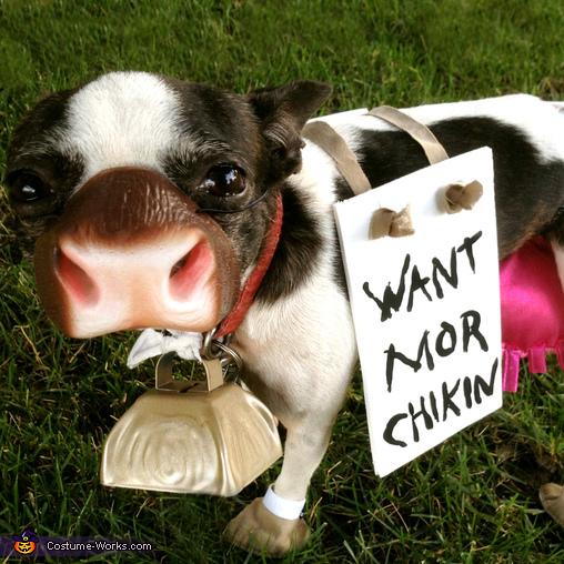 Chick-Fil-A Costume