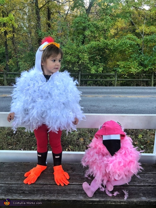 Flamingos don't dance with chickens, Chicken and Flamingo Costume